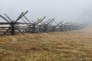 Rail Fence in Fog