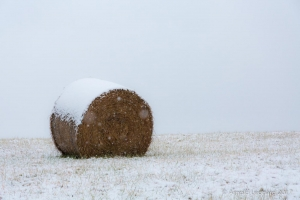 Manassas Battlefield Snowfall Hay Bale