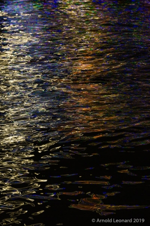 Seine Reflections