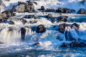 Great Falls Torrent