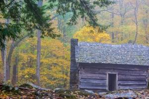 Roaring Fork Cabin