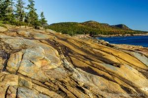Atop Otter Cliffs
